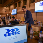 Annual Meeting of the High-level Group on Central and South-Eastern Europe Energy Connectivity (CESEC)