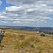 Boundary Stone on Burley Moor