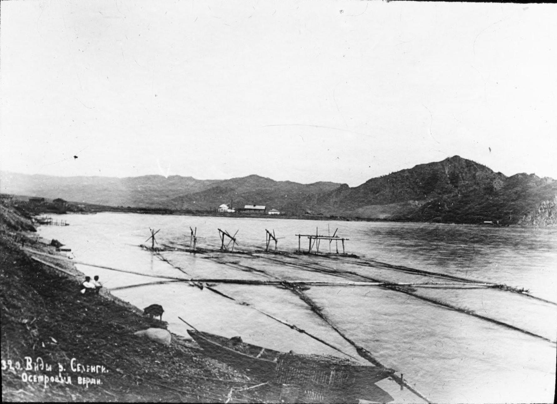 Виды реки Селенги. Осетровые верши