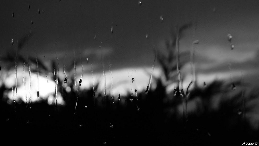 Rainy Day #1