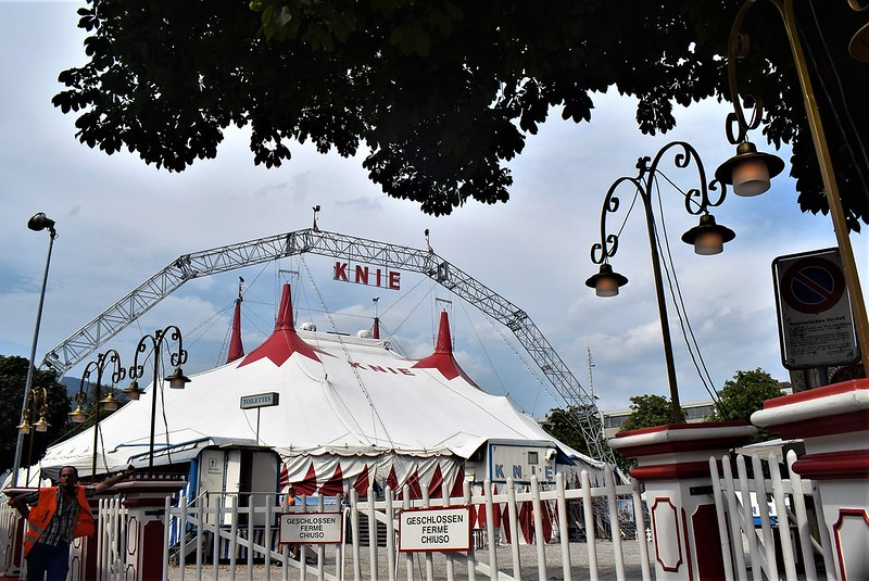 Circus Knie 06.08 (10)