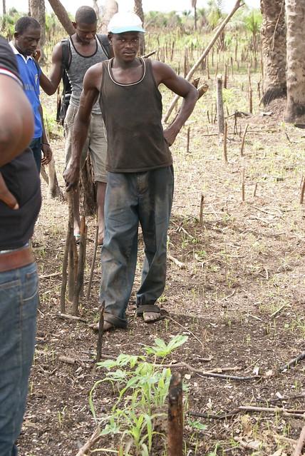 photo of farmer