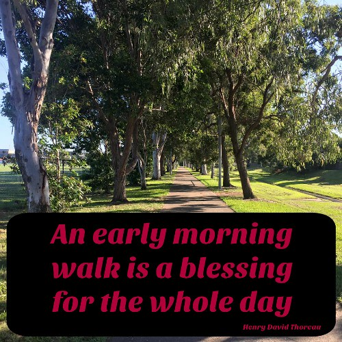 benefits of a morning walk
