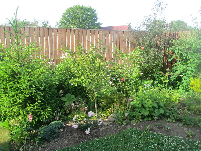 garden in Fife