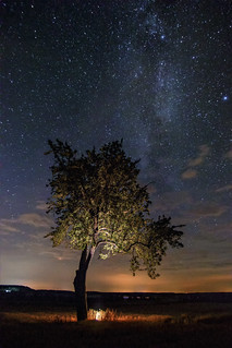 Goblins Tree