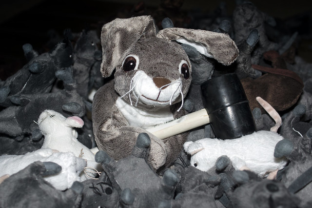 July 31 - little bunny foo foo