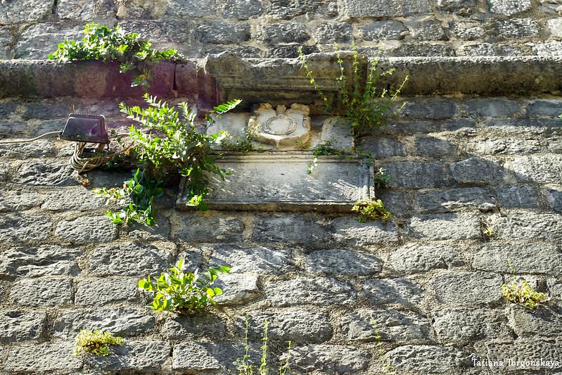 Герб возле старых городских ворот