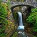 Mt. Rainier Park, Washington by elizabethschalock