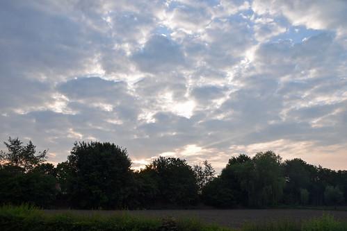 Sunset over HalleHeide
