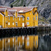 Nusfjord Harbor by Jeff Milsteen
