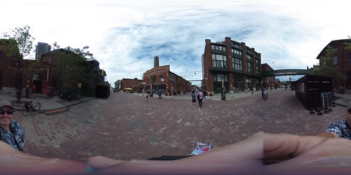 Distillery District Flamingos