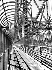 Jacques Cartier Bridge Walkway 1