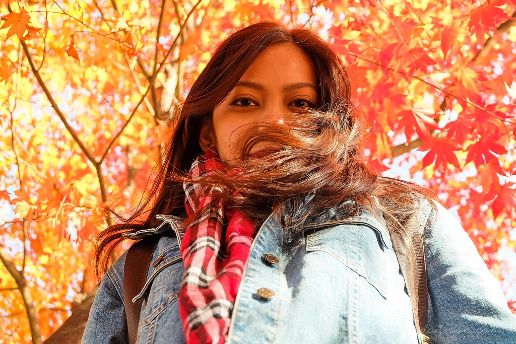 portrait_seoul_autumn_leaves
