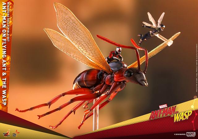 小心不要被鳥吃掉啦~~ Hot Toys – MMSC004 –《蟻人與黃蜂女》飛蟻上的蟻人與黃蜂女 Ant-Man on Flying Ant and the Wasp 微型人偶套組