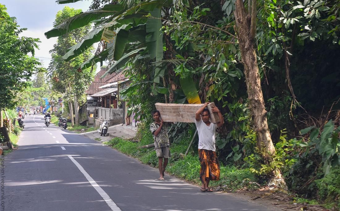 Bali-Ubud-(26)