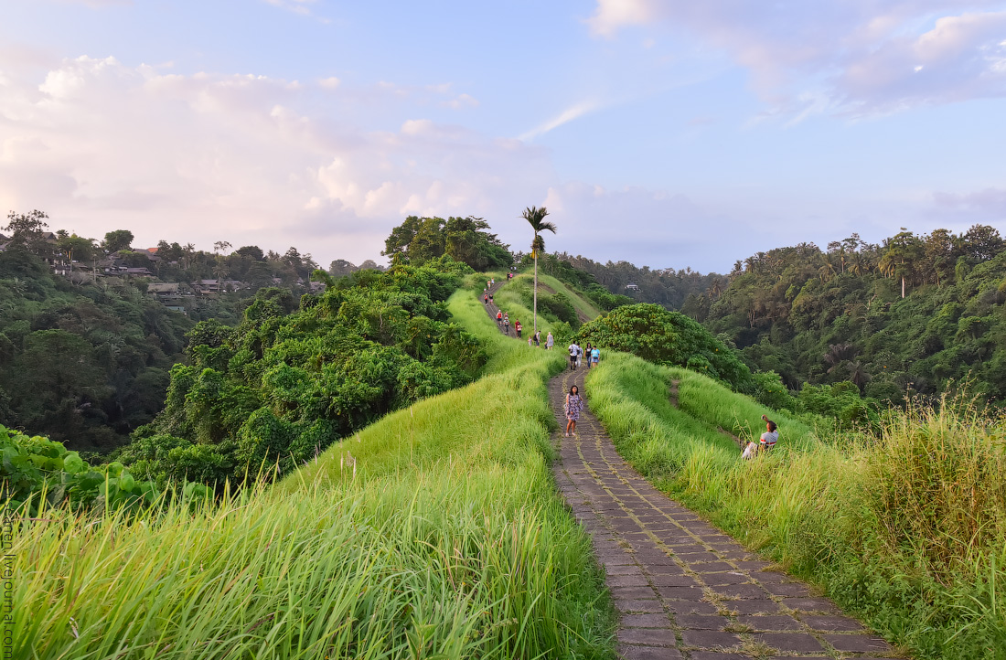 Bali-Ubud-(17)