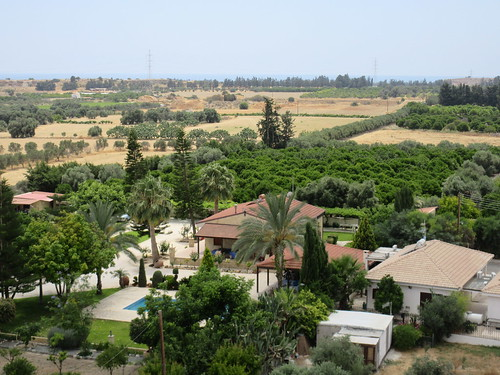 Fields and trees, view from Kolossi Castle, Cyprus