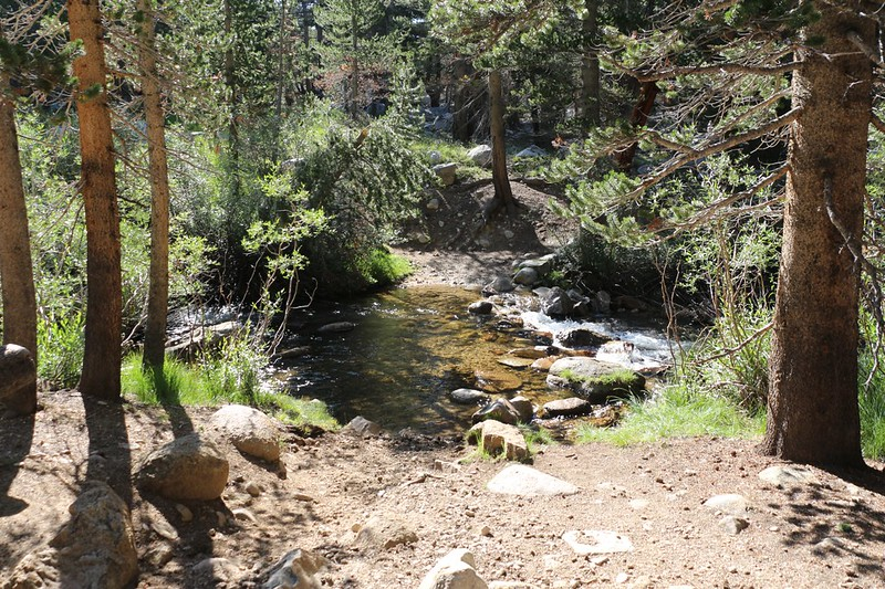 Where the John Muir Trail crosses Wright Creek - I took off my shoes and the water felt great