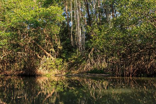 Río Arriba (45)