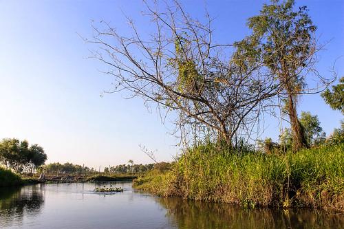 Río Arriba (15)