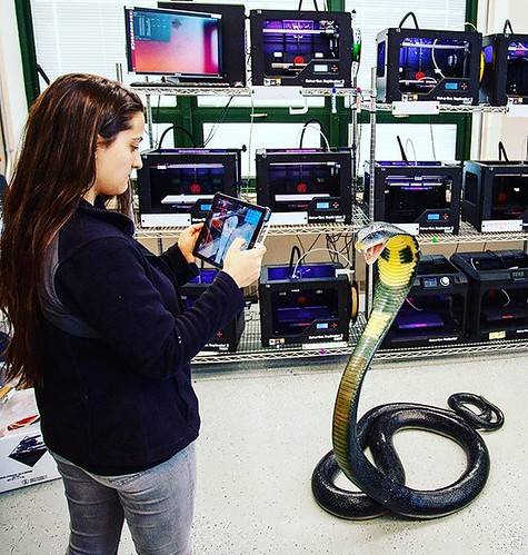 3D scanning a king cobra in the lab! #3dprinting @makerbot #npsocial #newpaltz #sunynewpaltz Don't worry it's a life size replica!