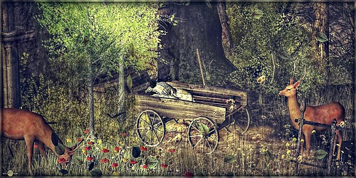 ╰☆╮Summer Scene with Cart.╰☆╮