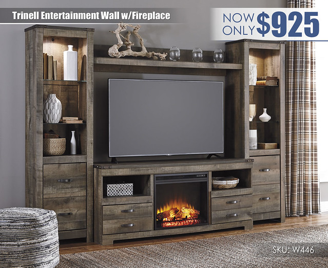 Trinell Brown Entertainment Wall wFireplace_W446-68-24(2)-27-W100-01