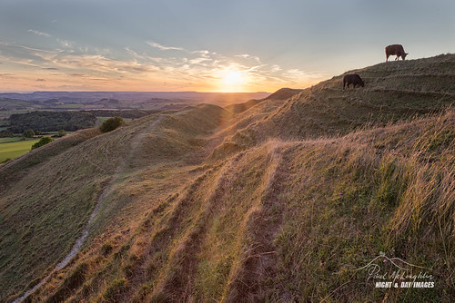 hill astro dorset hillfort bridport eggardonhill cow spyway askerswell sunset jurassiccoast powerstock ramparts bronzeage