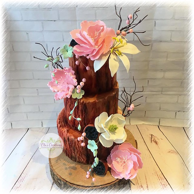 Cake by Olus Cake Creations