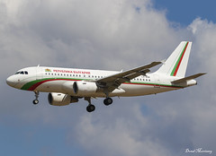 Government of Bulgaria A319-100 LZ-AOB A320-100 LZ-AOB