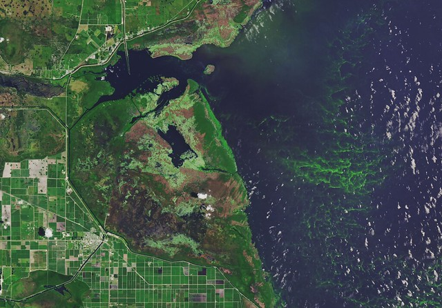 photo of Lake Okeechobee