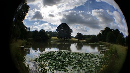 Row Ponds (Week 07/52)
