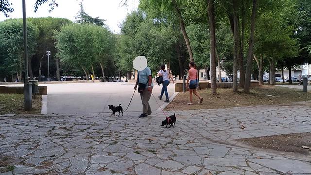 cani nei giardini pubblici