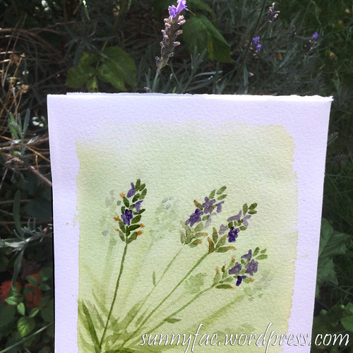 watercolour of lavender #worldwatercolourmonth