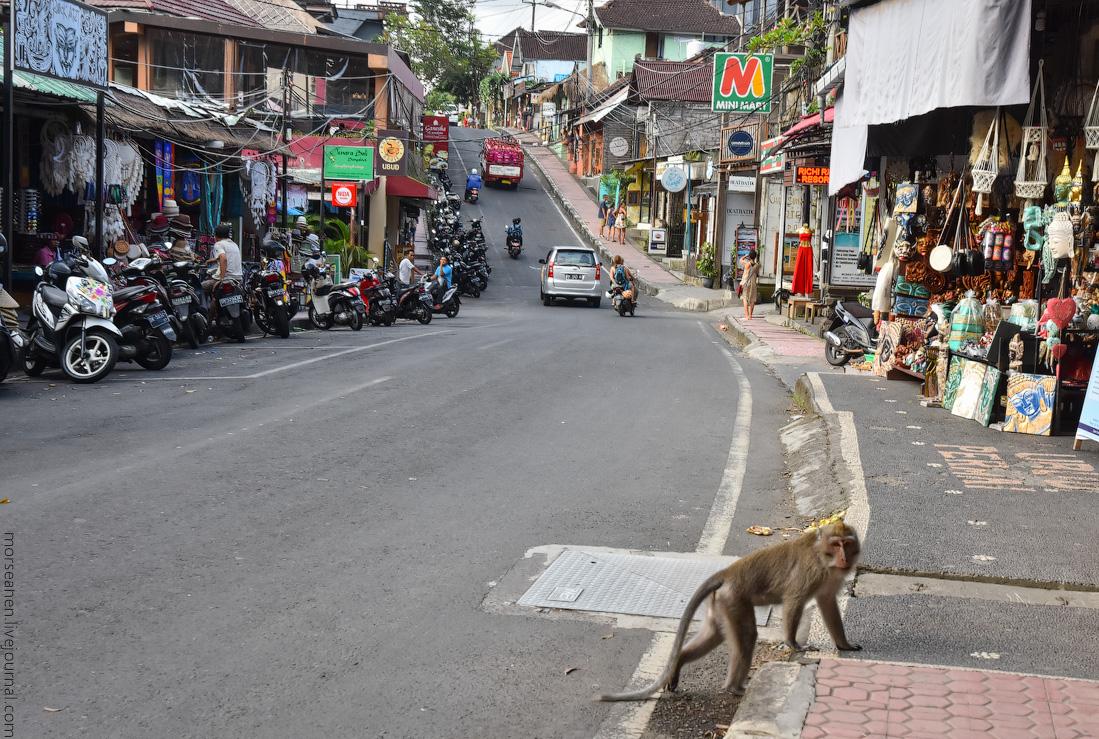 Bali-Ubud-(2)