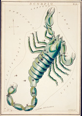 Sidney Hall's (?-1831) astronomical chart illustration of the Scorpio. Original from Library of Congress. Digitally enhanced by rawpixel.