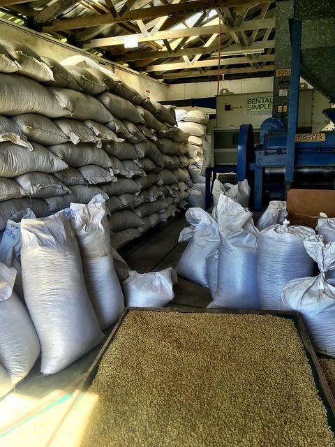 Tanna Coffee Factory.