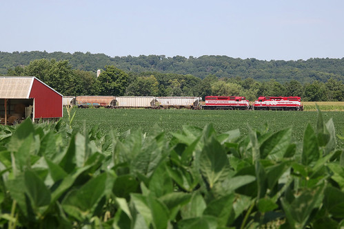 Soybeans and the Reedsburg Local