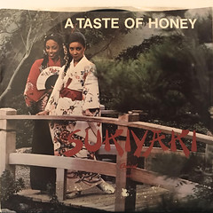 A TASTE OF HONEY:SUKIYAKI(JACKET A)
