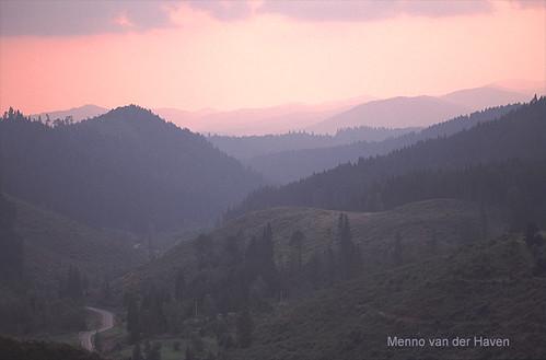 Transylvanian Woods