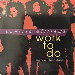 VANESSA WILLIAMS:WORK TO DO(JACKET A)