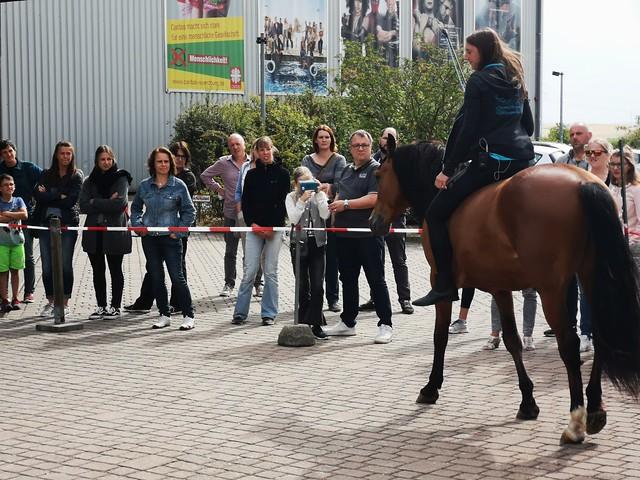 "Horsemanship Instruktor Carina Amrehn zu ""The Rider"" im CINEWORLD - Juni 2018"