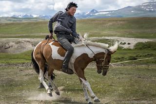Kazakh Cowboy