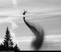 20180801_11 Helicopter liming the lake Stora Hällesvattnet where I cam