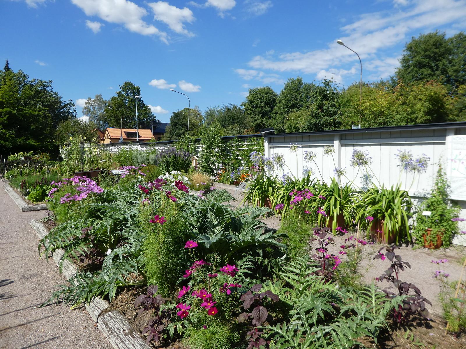 Uppsala Botanical Garden