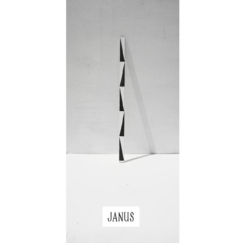 David Osbaldeston, Janus, 2018