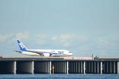 ANA B787 JA821A Taxiing in Haneda Airport 3