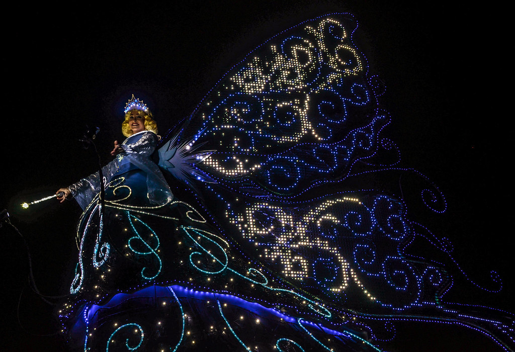 Dreamlights wings fairy TDL
