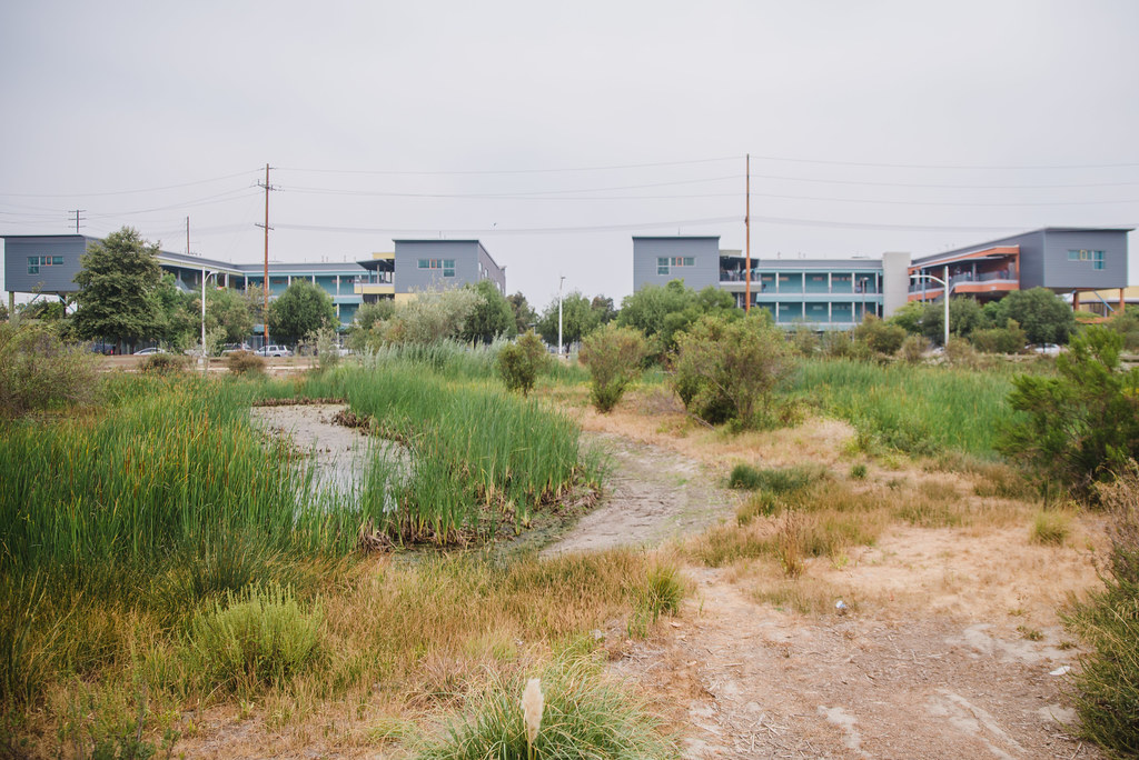 South Los Angeles Wetlands Park