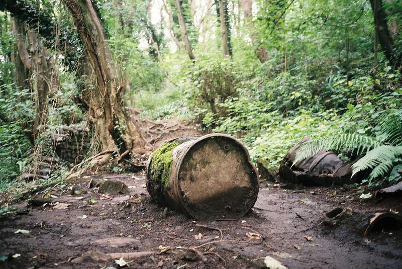 Tar barrels in Nightingale Valley